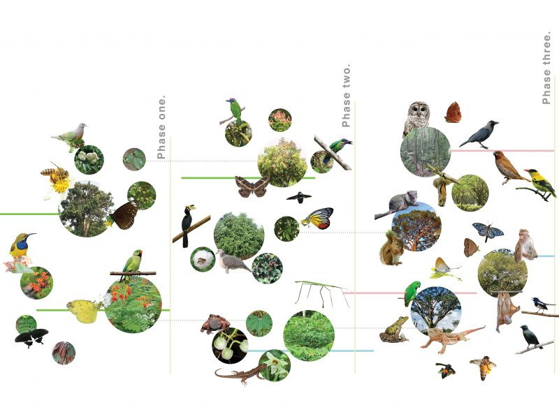 Landarch fauna-timeline-800x600 Campus Green Metabolism