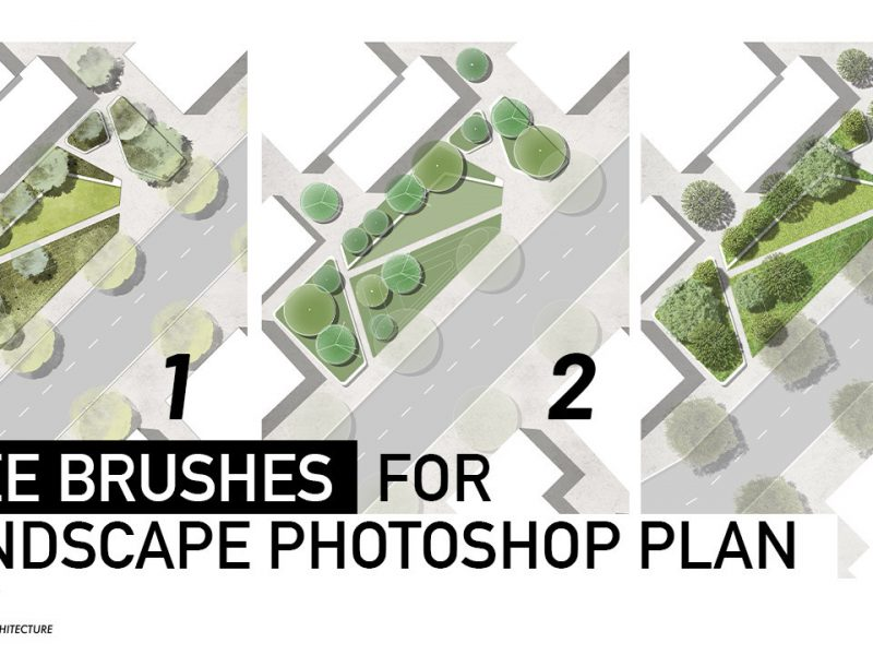 Landarch sa_1622545814_6ef83798899217.5ef6c015efacc-800x600 How to draw trees on Landscape Plan Rendering in Photoshop